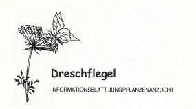 Informationsblatt Jungpflanzenanzucht