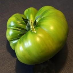 Fleischtomate Grüne