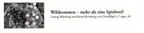 Informationsblatt Wildtomaten
