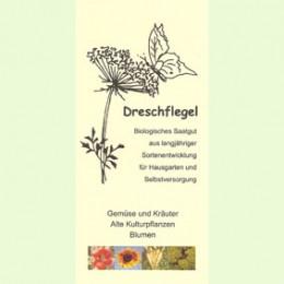 Dreschflegel-Faltblatt