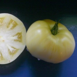 Fleischtomate White beauty